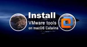 Install VMware Tools on macOS